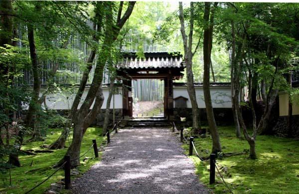 竹の寺 地蔵院_e0048413_18222168.jpg