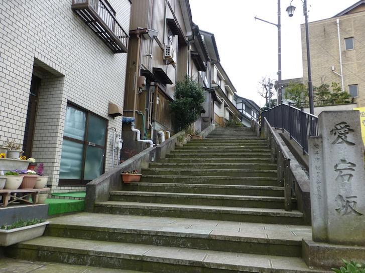 福井・富山編(19):福井(16.3)_c0051620_21274132.jpg