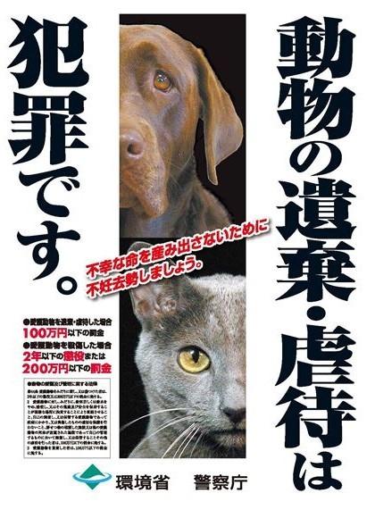動物愛護が嫌な右派_f0133526_10530604.jpg