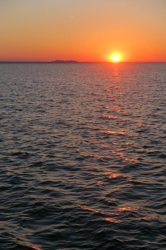 白鳥の親子たそがれのトラジメーノ湖に_f0234936_5395936.jpg
