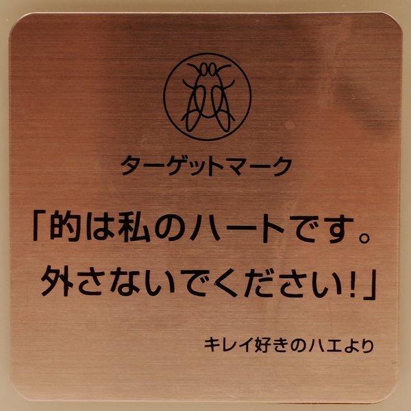 タ-ゲットマ-ク_b0190540_20553040.jpg