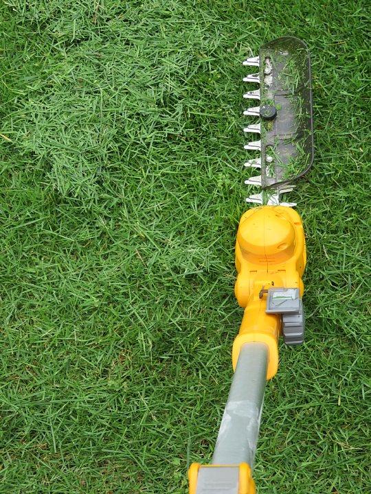 2019年7月24日 令和2度目の芝刈り作業 !(^^)!_b0341140_1574010.jpg
