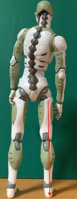 どこかが痛いとき、全体の姿勢を整えることが大切な理由(足首編)〜ある日の施術より〜_e0073240_09424263.jpg