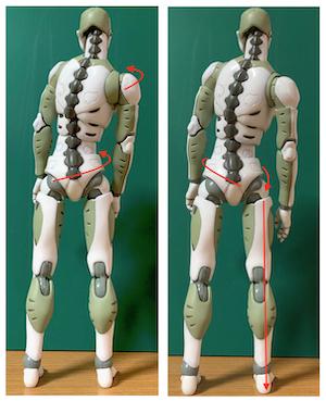 どこかが痛いとき、全体の姿勢を整えることが大切な理由(足首編)〜ある日の施術より〜_e0073240_09543025.jpg