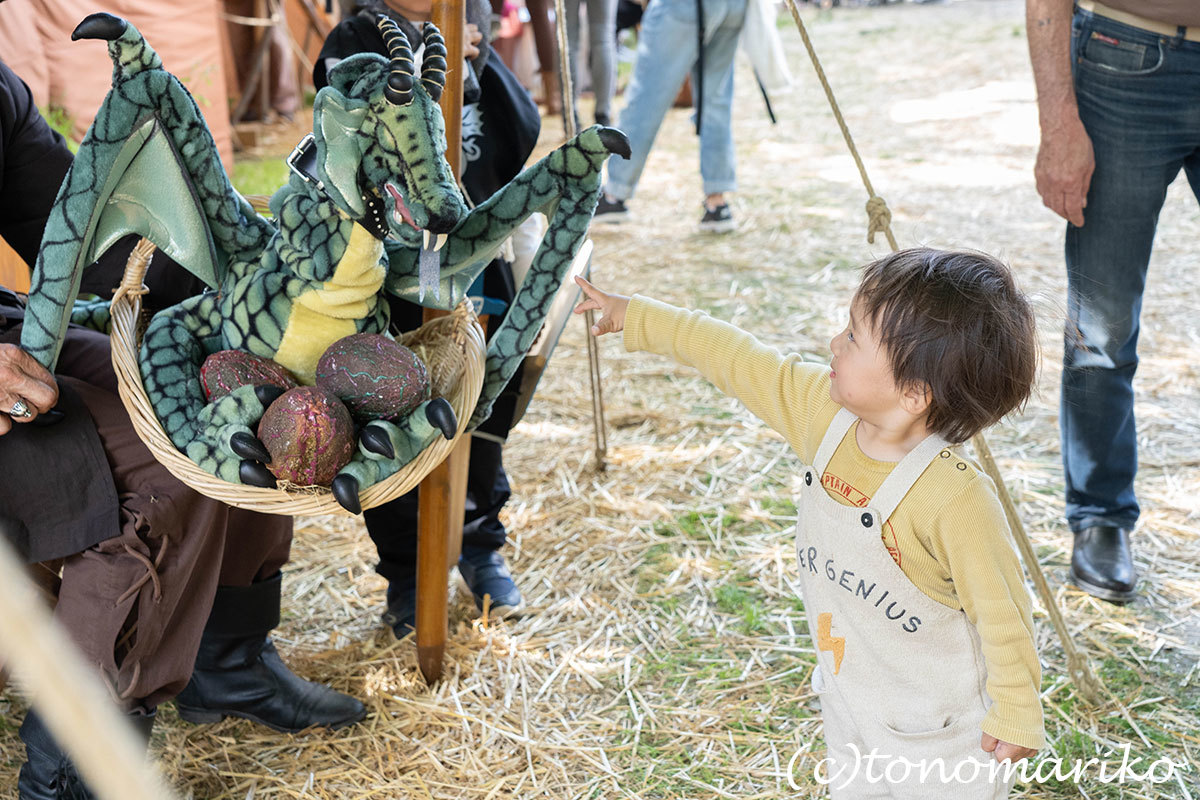 世界遺産の町、プロヴァンの「中世祭り」へ_c0024345_02544804.jpg