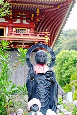 矢田寺の紫陽花とカサブランカ♪_b0194861_18202112.jpg