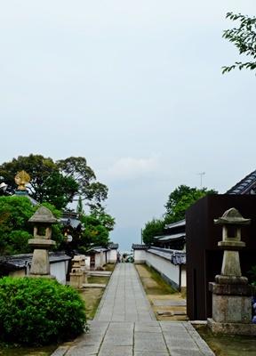 矢田寺の紫陽花とカサブランカ♪_b0194861_18224615.jpg