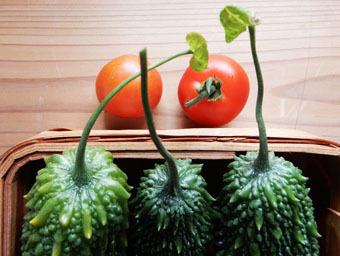 ことしはつの収穫_c0195909_10160283.jpg