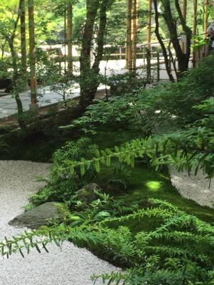 庭園美堪能_b0151911_00242318.jpg