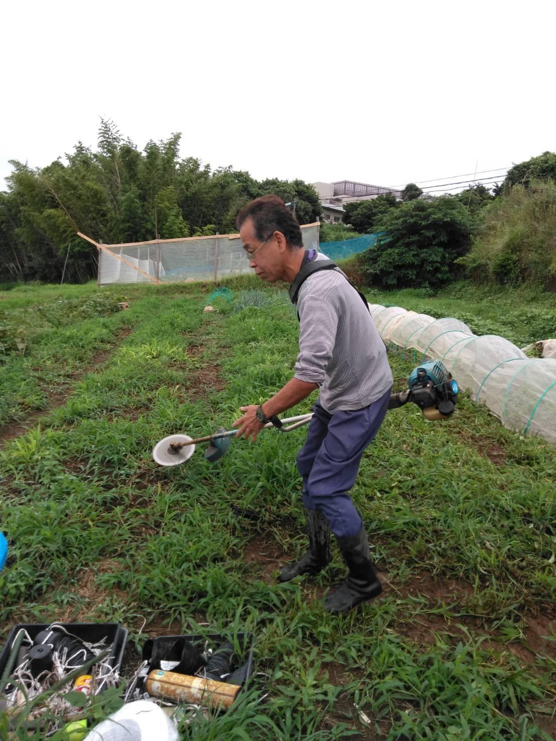 草刈り殆ど トマトや茄子の下葉切り取り 畝間の雑草取り・・_c0222448_12271187.jpg