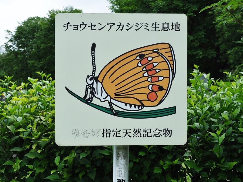 梅雨空の陸奥へ(壱)_f0310988_14500241.jpg