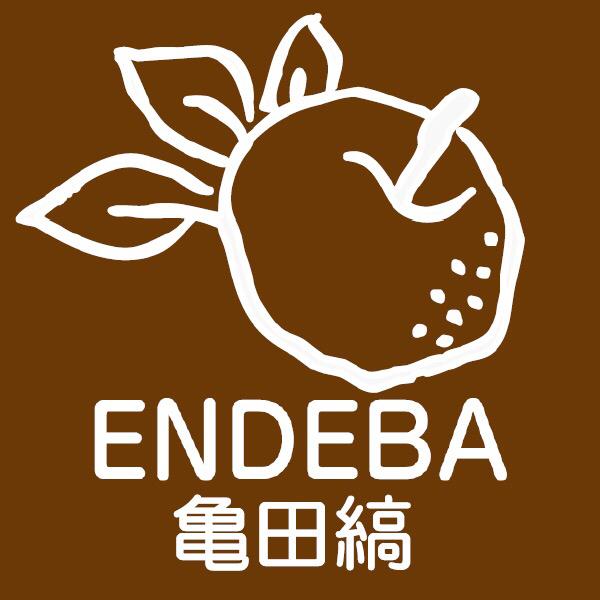 2019.7.7 ENDEBA 亀田縞_f0309404_12113098.jpg
