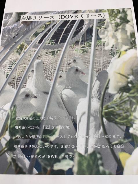 白い鳩リリースをしていますが、幸せな門出から、この世の卒業まで… _b0176010_22371712.jpg