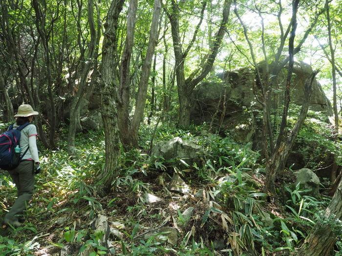 燕岩登山_c0116915_00395307.jpg