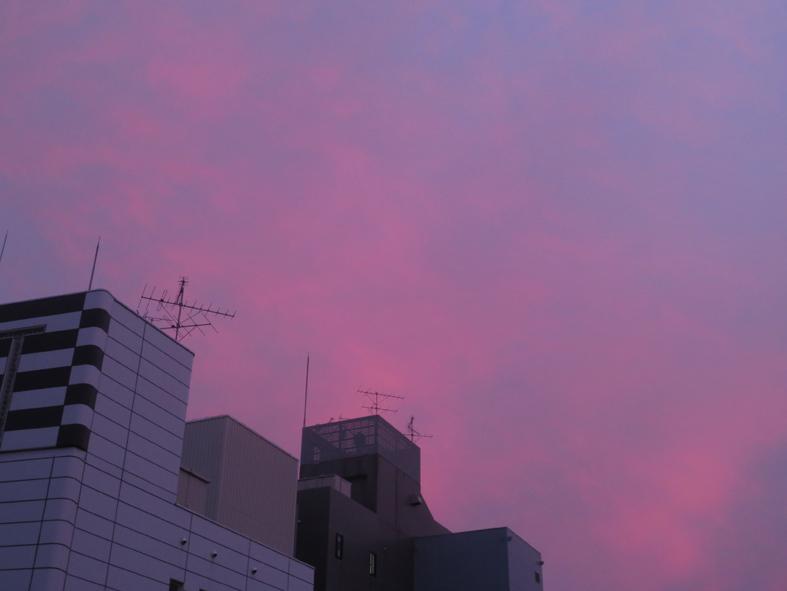 ■梅雨一休み中のウォーキング――週替わりの夕暮れ[6/25-7/7]_d0190217_23081983.jpg