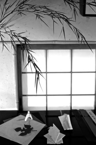 七夕に咲く庭の花_a0197730_00422998.jpg