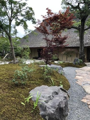七夕に咲く庭の花_a0197730_08444294.jpeg