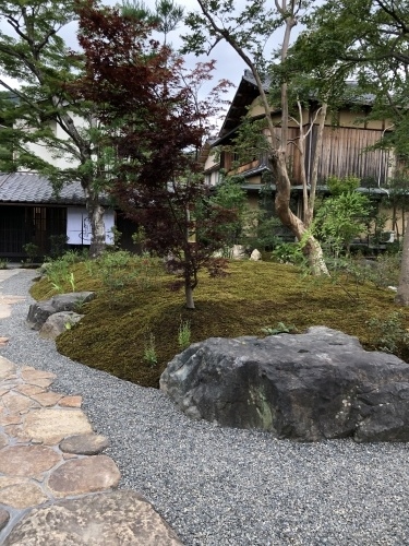 七夕に咲く庭の花_a0197730_08450501.jpeg