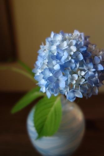 七夕に咲く庭の花_a0197730_22592877.jpg