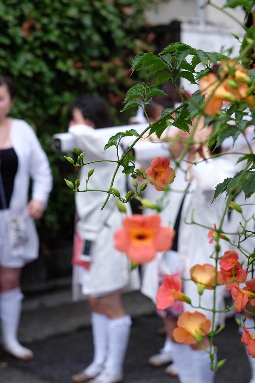 令和元年 秋谷神明社御祭禮−5_f0156448_19262321.jpg