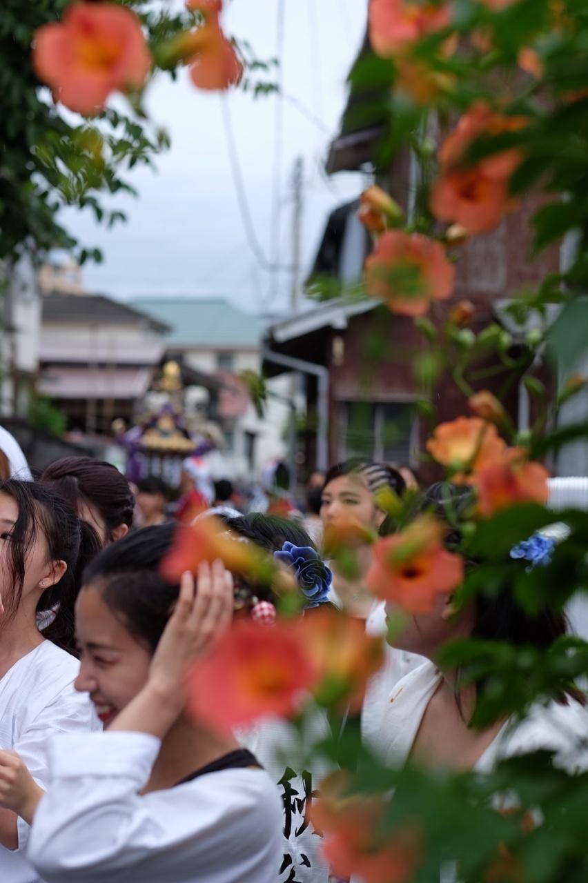 令和元年 秋谷神明社御祭禮−5_f0156448_19264621.jpg