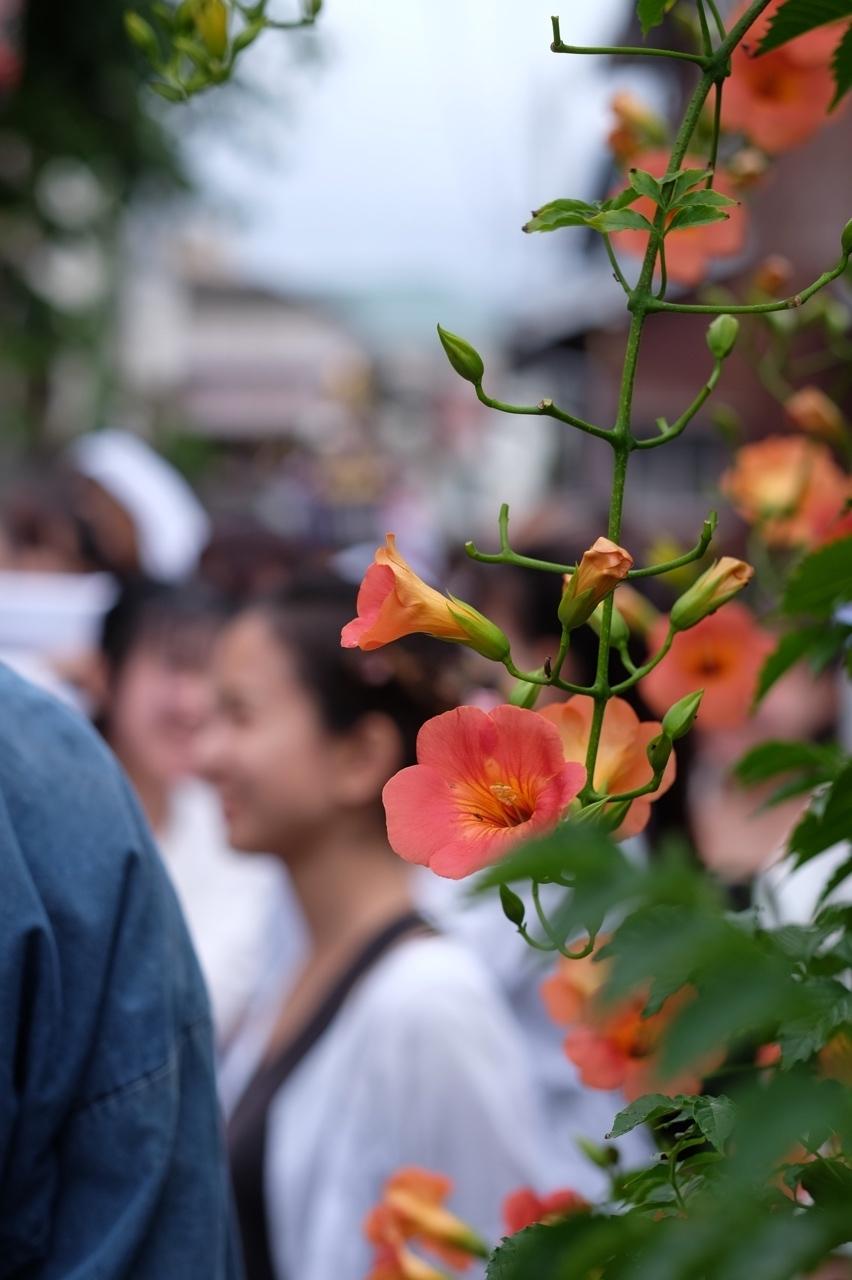 令和元年 秋谷神明社御祭禮−5_f0156448_19264658.jpg