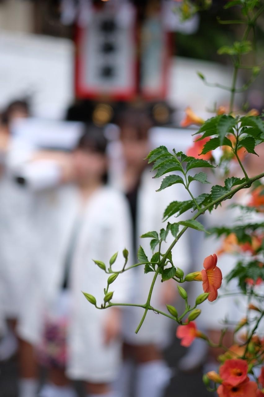 令和元年 秋谷神明社御祭禮−5_f0156448_19264739.jpg