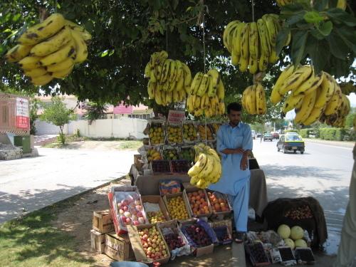パキスタン 国際線が悩ましい2019_d0106555_02253234.jpg