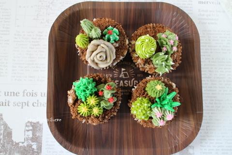 【募集中】サボテンのカップケーキ 7/26(金)_e0111355_16374911.jpg
