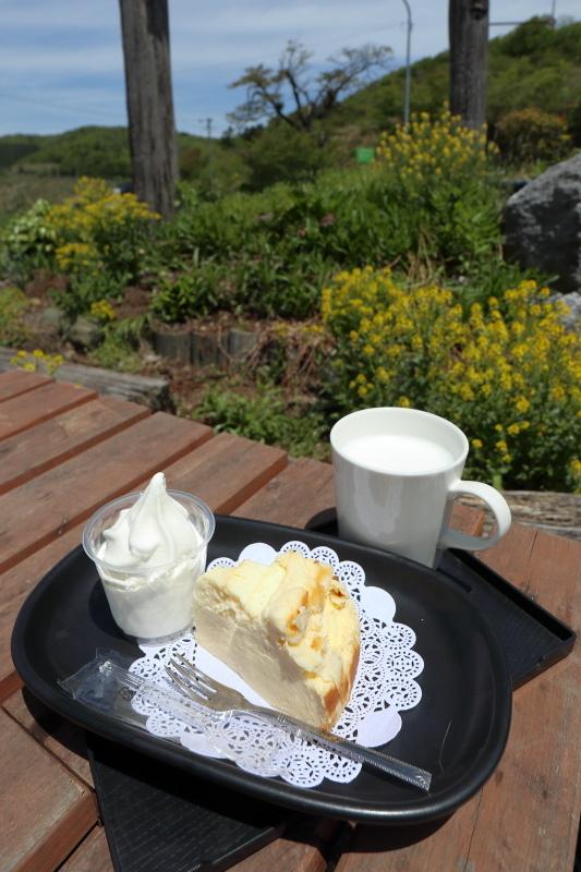 チーズケーキを食べに、四国カルスト 大野ヶ原へ その2_a0077663_22381942.jpg