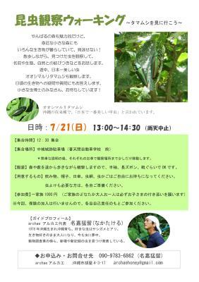 2019 昆虫観察ウォーキング~タマムシを見に行こう 開催します!_a0247891_09194689.jpg