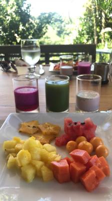 コスタリカでの最高なヨガリトリート フレッシュな食べ物_e0255210_07535490.png