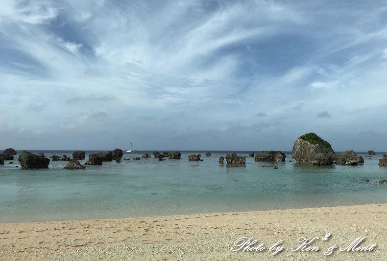 南の島 1日目「アカショウビン」「キビタキ赤ちゃん~Σ^) 」そして綺麗な海でした♪_e0218518_11502228.jpg