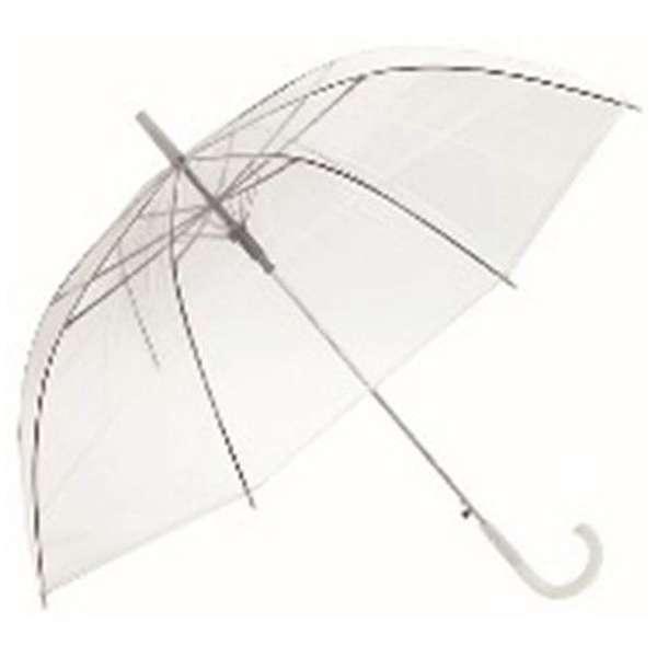 井上陽水の『傘がない』と自民党支持の若者_f0133526_11091540.jpg
