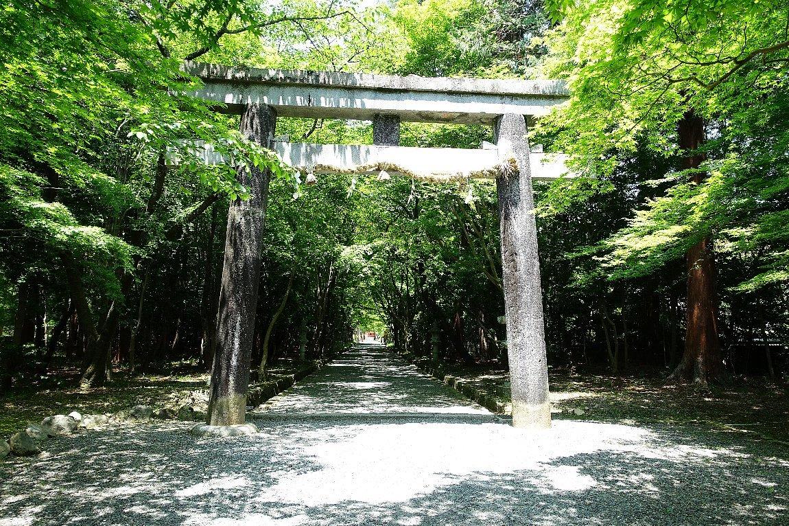 大原野神社(その1)参道で昼食_c0112559_08102737.jpg