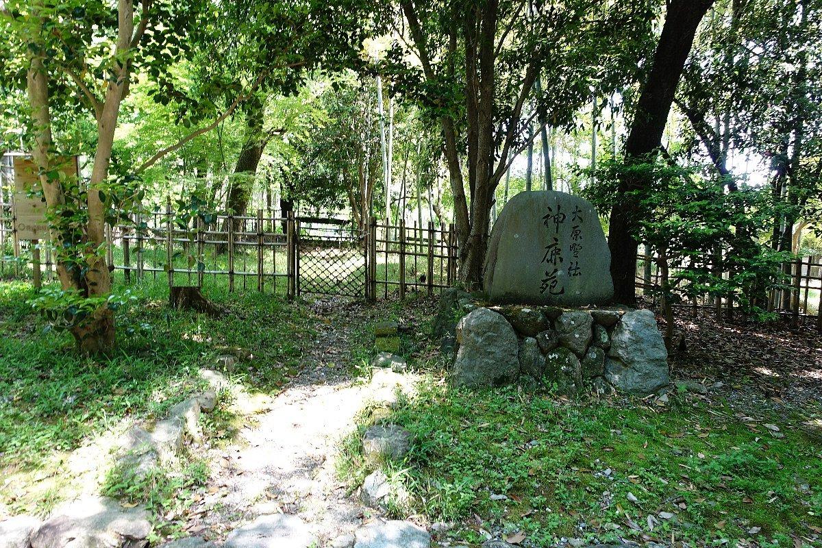 大原野神社(その1)参道で昼食_c0112559_08113818.jpg