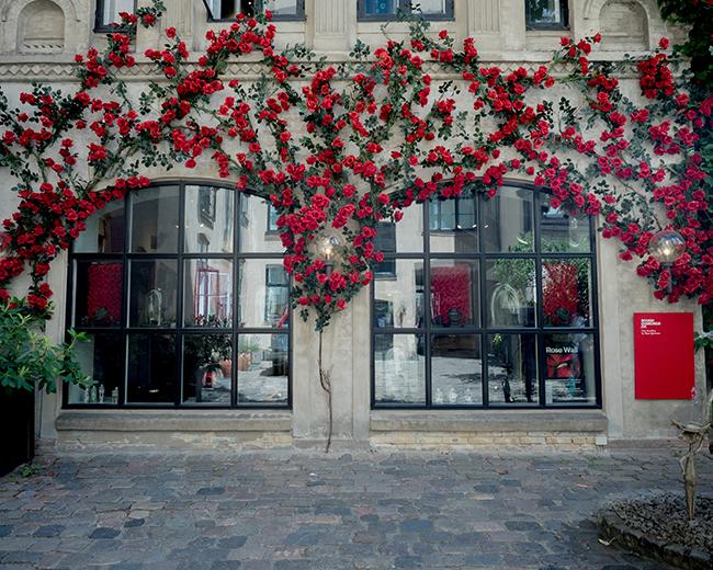 追憶のコペンハーゲン・薔薇の館篇。_b0022268_18572755.jpg