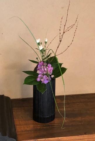 茶花の会_d0073371_17173429.jpg