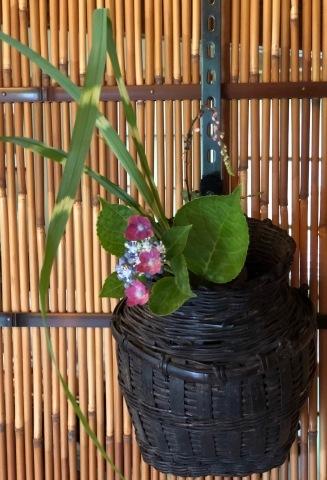 茶花の会_d0073371_17181290.jpg