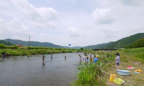 川遊び 伊自良川2019  (初ウキゴリ)_b0029488_20580065.jpg