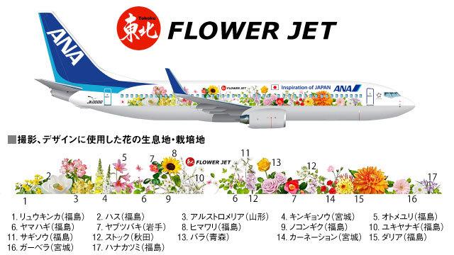 FLOWER JET。_b0044115_06530229.jpg