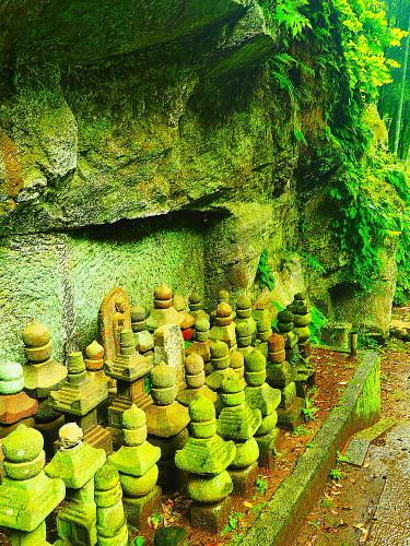 鎌倉 梅雨の無常な光景_a0287533_21035085.jpg