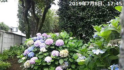 d0051601_15302455.jpg