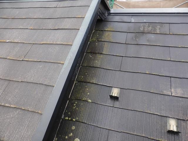 屋根・外壁の塗装_b0142417_18435588.jpg