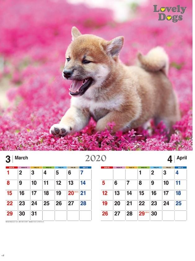 来年用の企業用カレンダー_f0031022_21435378.jpg