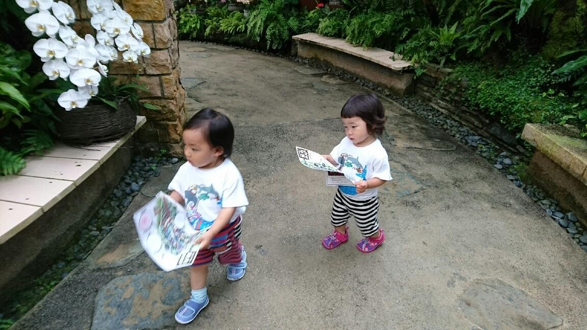 1歳6ヶ月  再会_e0277143_16165674.jpg
