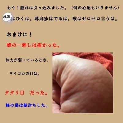 f0224350_14330049.jpg