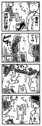 2004年5月17日のシバツレ漫画_b0057675_09174282.jpg