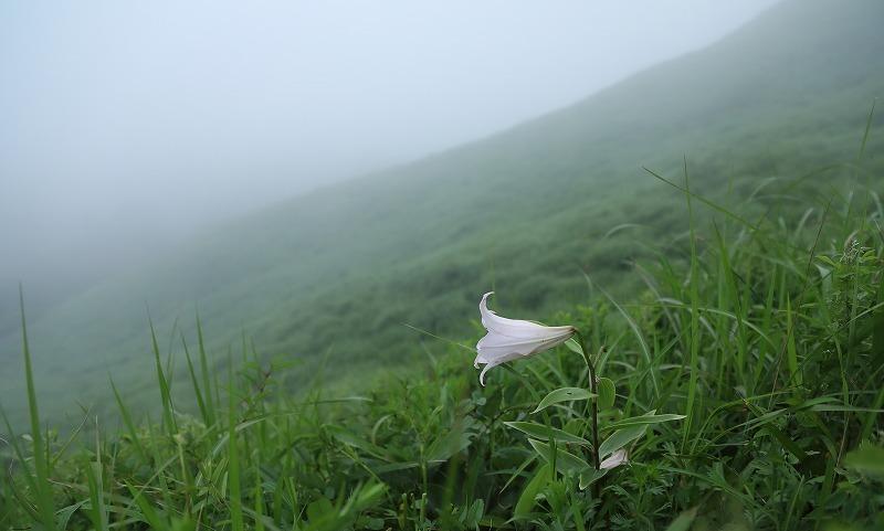 山に暮らせば_e0091879_00514843.jpg