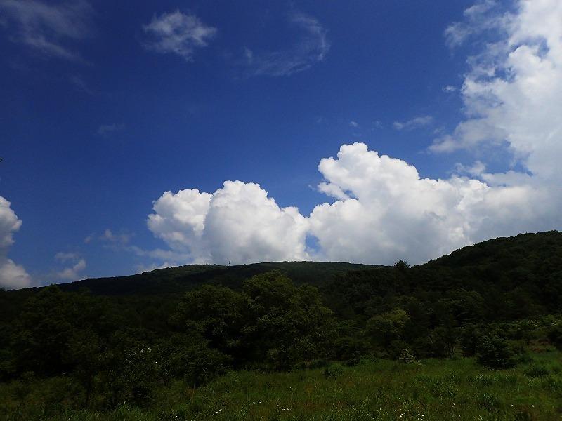 山に暮らせば_e0091879_00535248.jpg